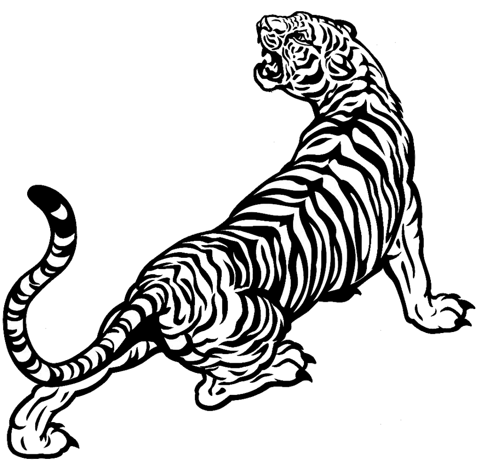 Black and white tiger book clipart free clip art White tiger Drawing Black and white - tiger 940*905 transprent Png ... clip art