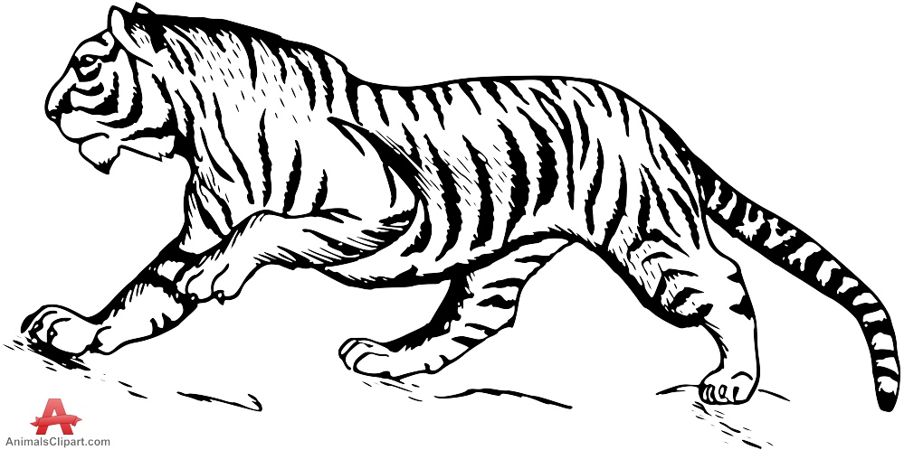 Tiger clipart line drawing vector black and white stock Black And White Tiger Clipart | Free download best Black And White ... vector black and white stock