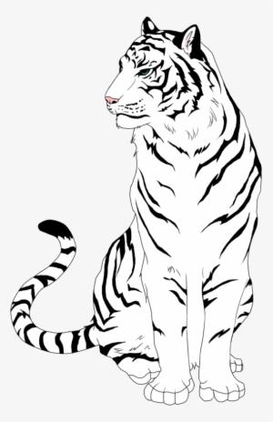 Black and white tiger clipart svg stock White Tiger PNG, Transparent White Tiger PNG Image Free Download ... svg stock