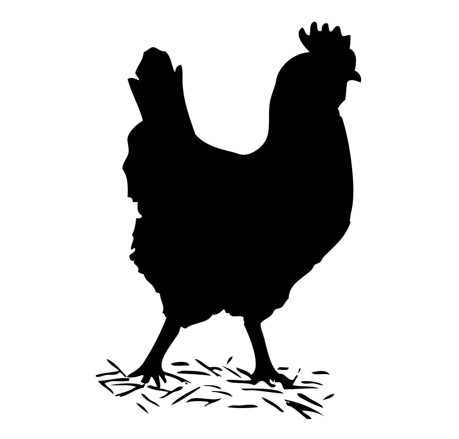Black and white transparent chicken and pig clipart clip art library library Chicken Clipart Track Hen Black And White Transparent Png - AZPng clip art library library