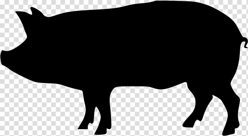 Black and white transparent chicken and pig clipart vector transparent library Black and white pig sketch, Domestic pig Silhouette , pig ... vector transparent library