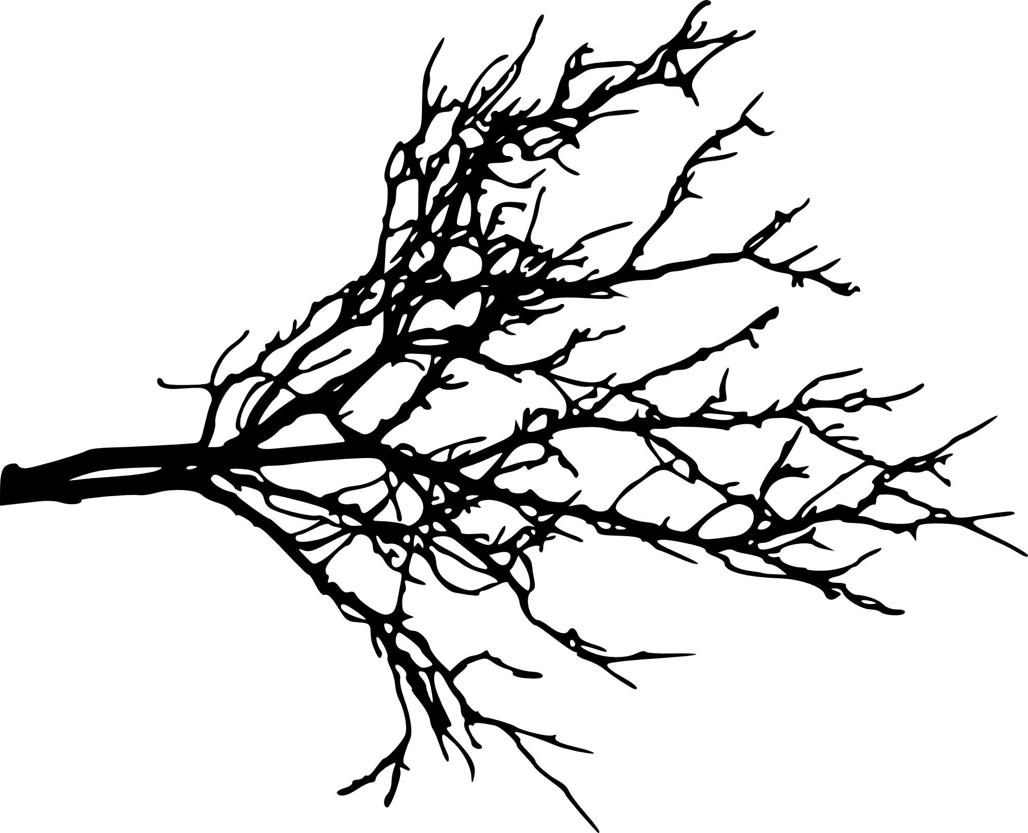 Black and white tree branch clipart clipart free download Silhouette Tree Branches at GetDrawings.com | Free for personal use ... clipart free download
