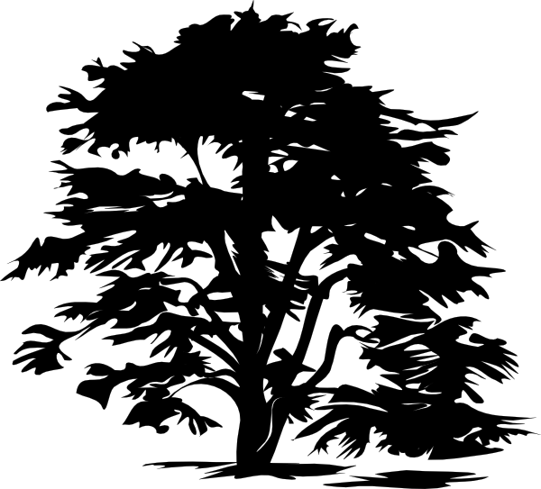 Black and white tree branch clipart graphic library library Black And White Tree Clip Art at Clker.com - vector clip art online ... graphic library library
