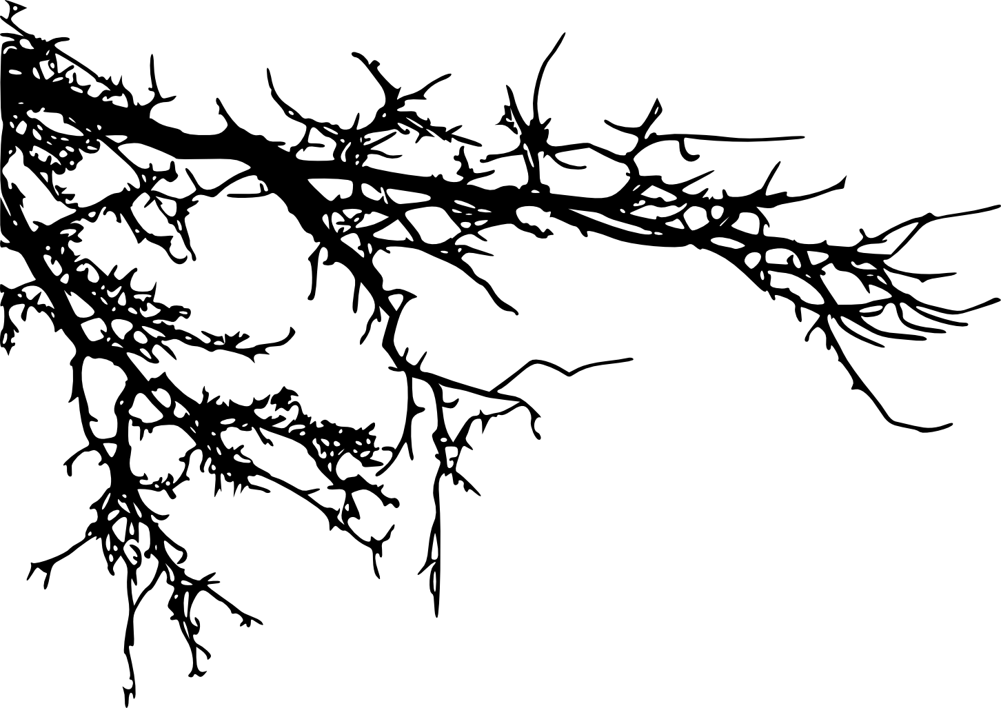 Black and white tree branch clipart banner freeuse library Branch Tree Silhouette Clip art - tree branch 1452*1027 transprent ... banner freeuse library