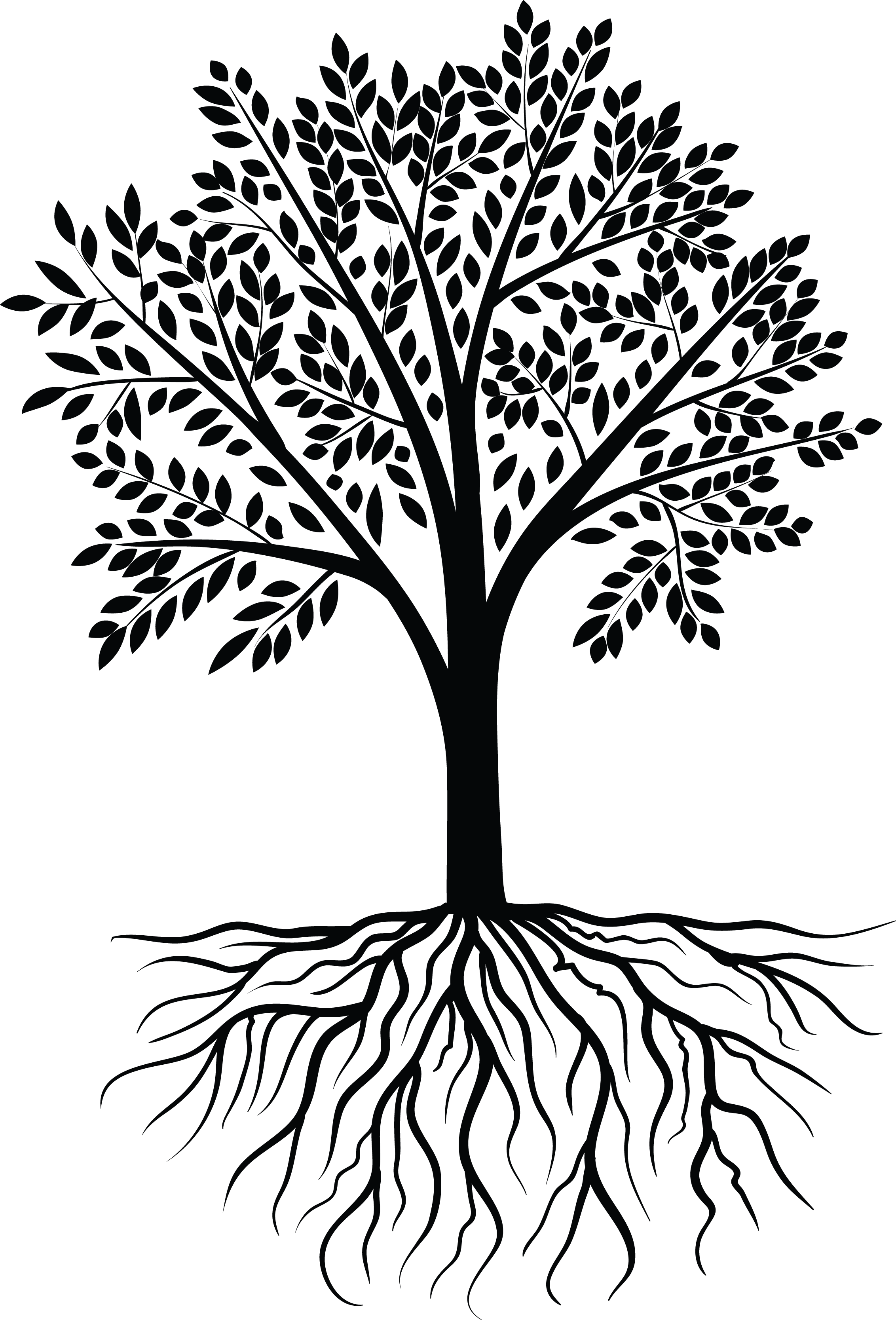 Black and white tree with roots clipart graphic Tree Vector Black White | design | Pinterest | Scrapbooking graphic
