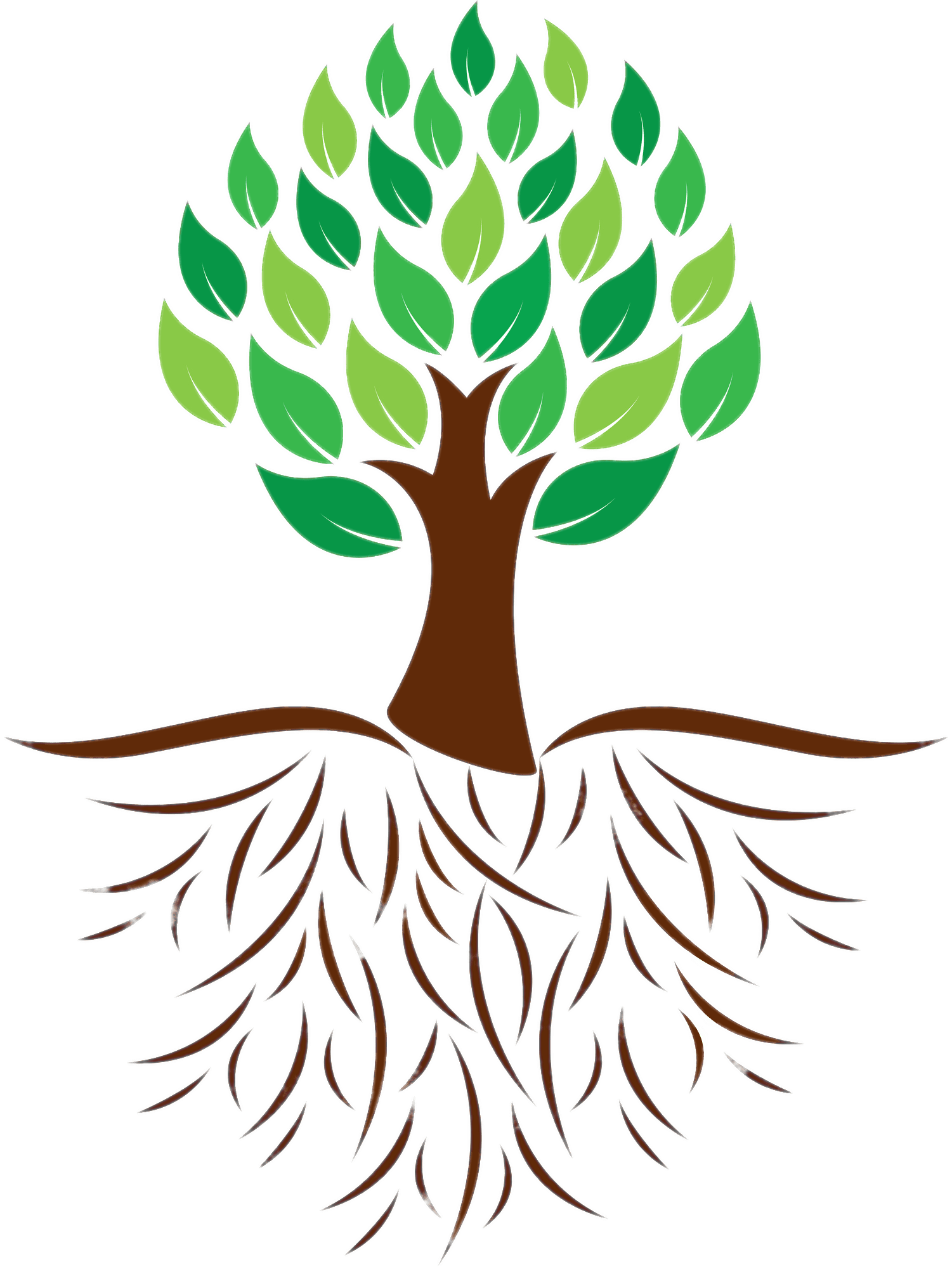 Cross roots clipart picture black and white library Tree and Roots Colour Illustration transparent PNG - StickPNG picture black and white library