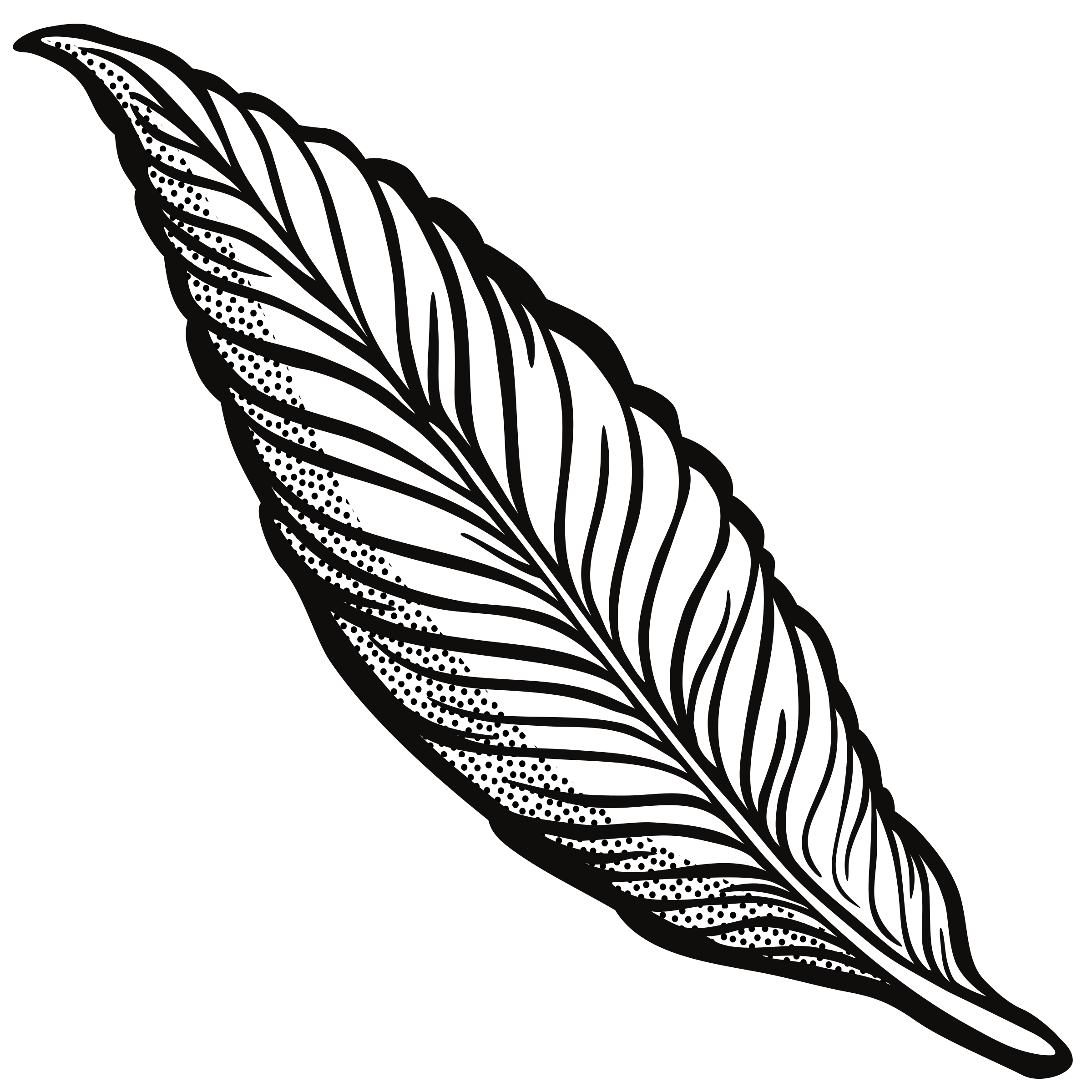 Turkey feather clipart free image black and white download Line Drawing Feather at GetDrawings.com | Free for personal use Line ... image black and white download