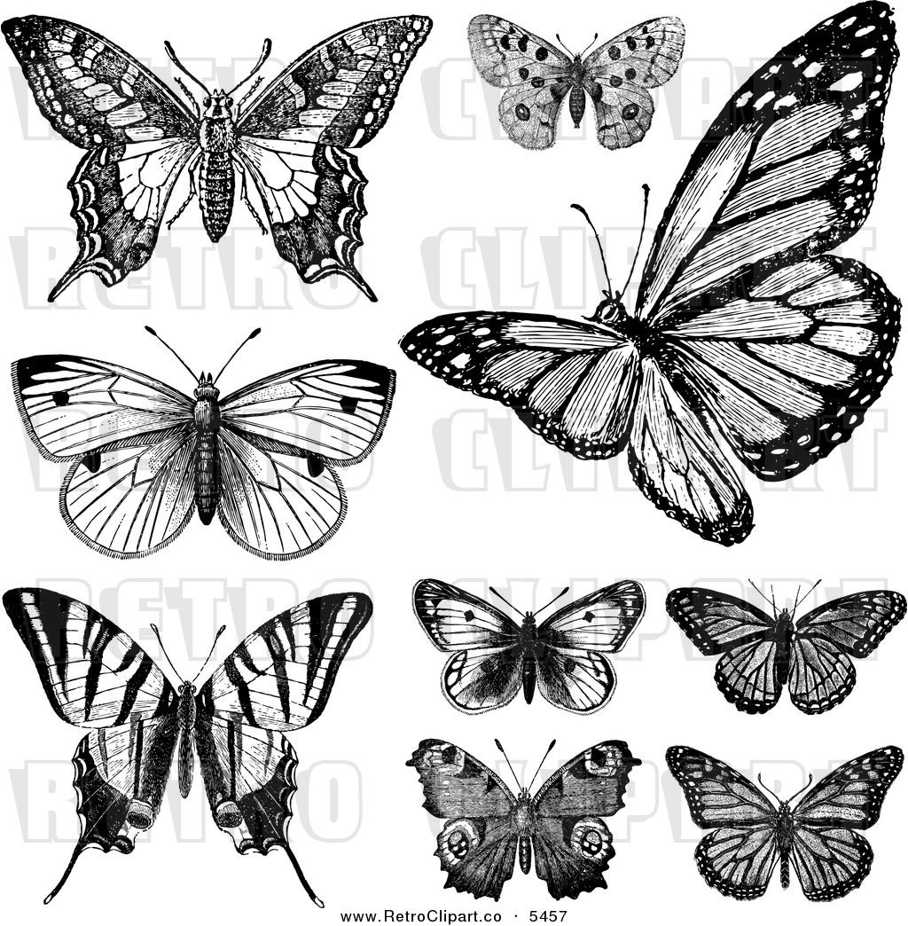 Black and white victorian clipart png transparent vintage drawings and pictures | Vector Clipart of Retro Black and ... png transparent