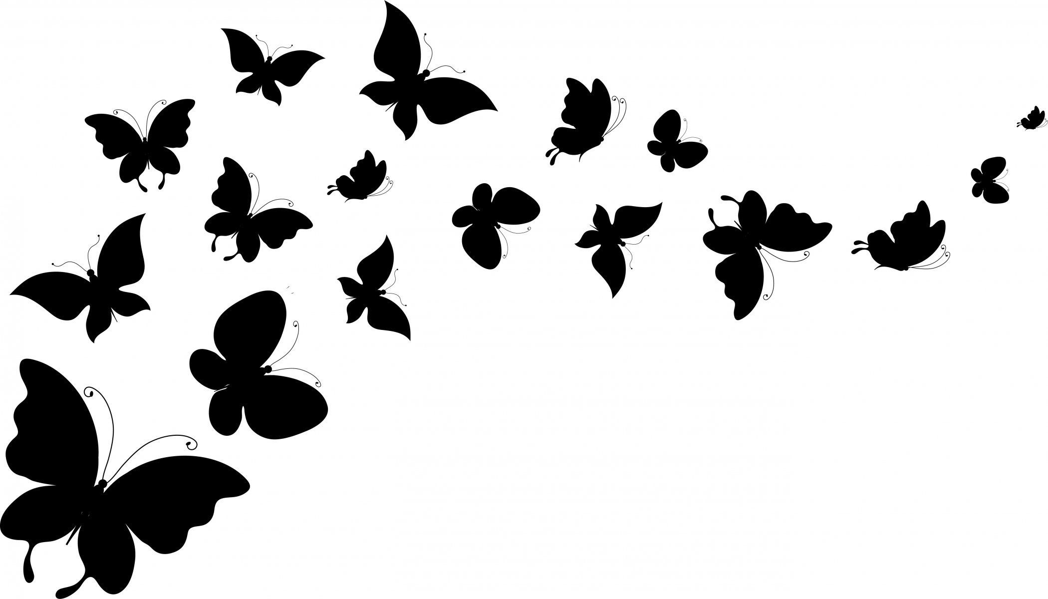 Black and white wallpaper clipart image stock butterfly silhouettes wings background white HD wallpaper   Metal ... image stock