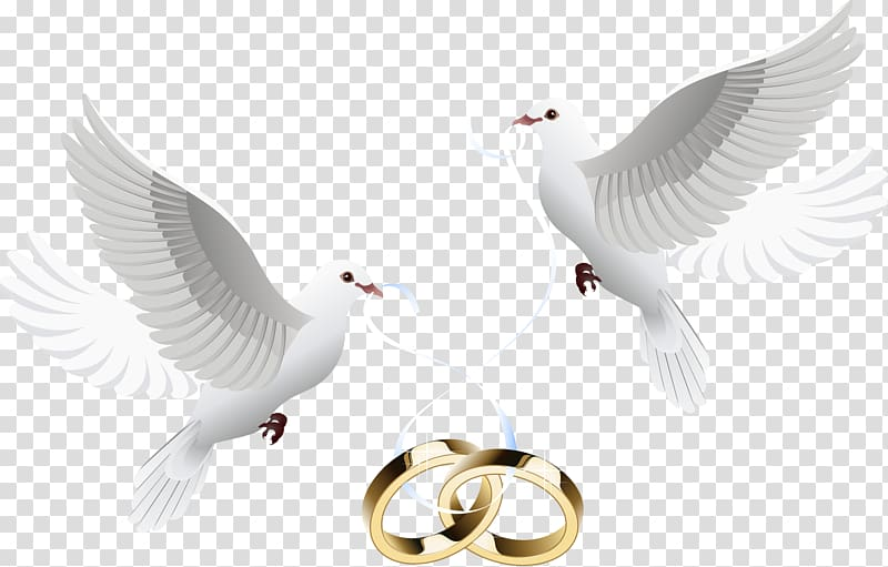 Black and white wedding dove wreath clipart jpg transparent library Gold-colored wedding bond and two white birds , Wedding invitation ... jpg transparent library