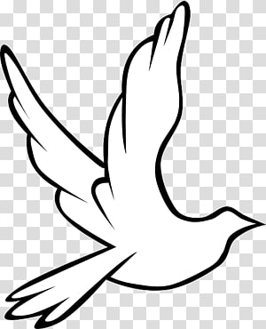 Black and white wedding dove wreath clipart picture transparent library White dove icon, Columbidae Holy Spirit Doves as symbols , Wedding ... picture transparent library