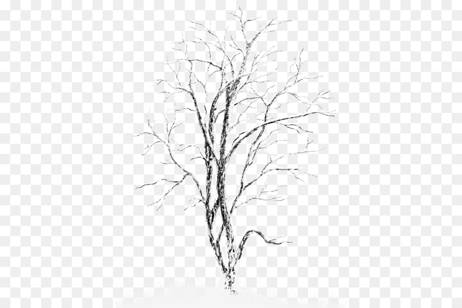 Black and white winter birch tree clipart jpg library library Birch Tree png download - 450*600 - Free Transparent Silver Birch ... jpg library library