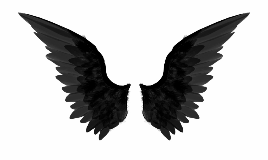 Black angel wings clipart png freeuse stock Dark Angel Clipart Transparent - Black Angel Wings Png Free PNG ... png freeuse stock