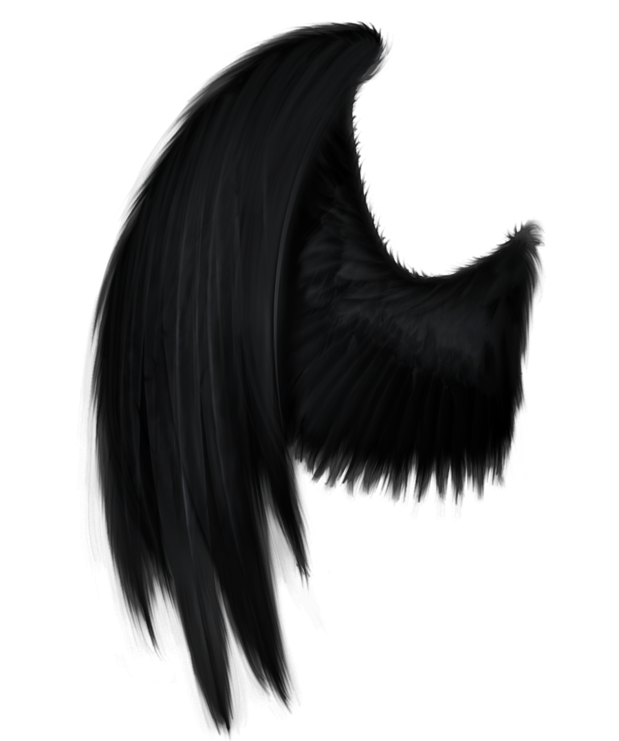 Black angel wings clipart clip library stock Free Black Angel Pictures, Download Free Clip Art, Free Clip Art on ... clip library stock
