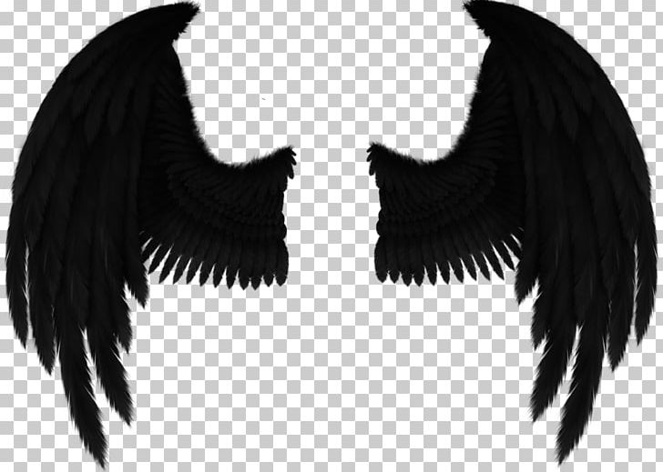 Black angel wings clipart png black and white library Drawing Fallen Angel Art PNG, Clipart, Angel, Angel Wings, Art, Art ... png black and white library
