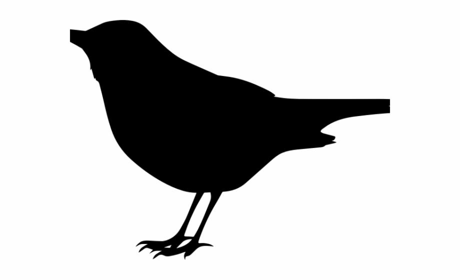 Black bird images clipart picture transparent Blackbird Clipart Transparent - Bird Clipart Black Free PNG Images ... picture transparent