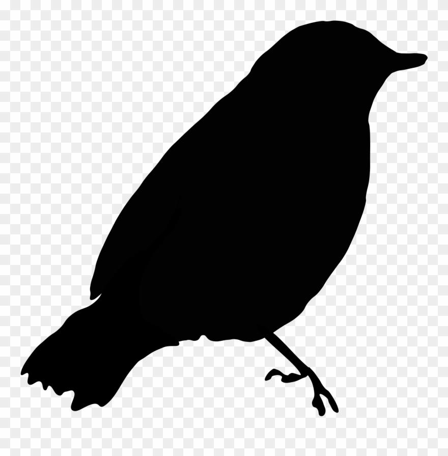 Texas state bird clipart black and white siloette banner transparent stock Image Of Blackbird Clipart 1 Black Bird Clip Art At - Black Bird ... banner transparent stock