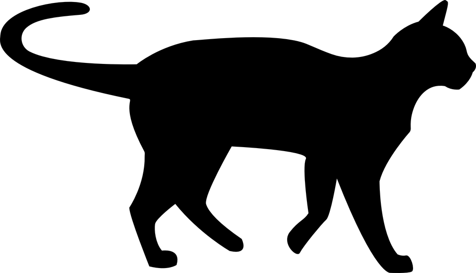 Black Cat Silhouette transparent PNG - StickPNG clipart free