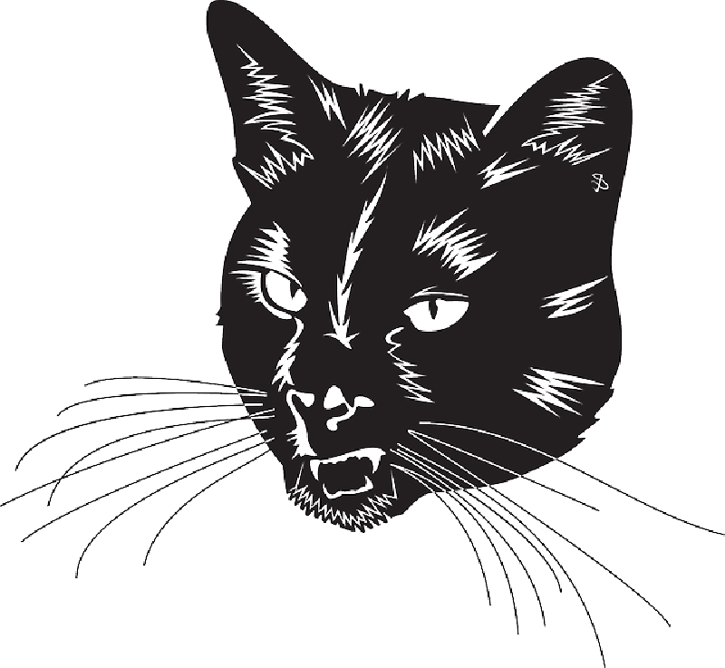 Black cat head clipart black and white picture freeuse download Black Cat Head With Whiskers transparent PNG - StickPNG picture freeuse download