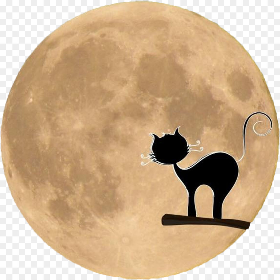 Black cat moon clipart halloween