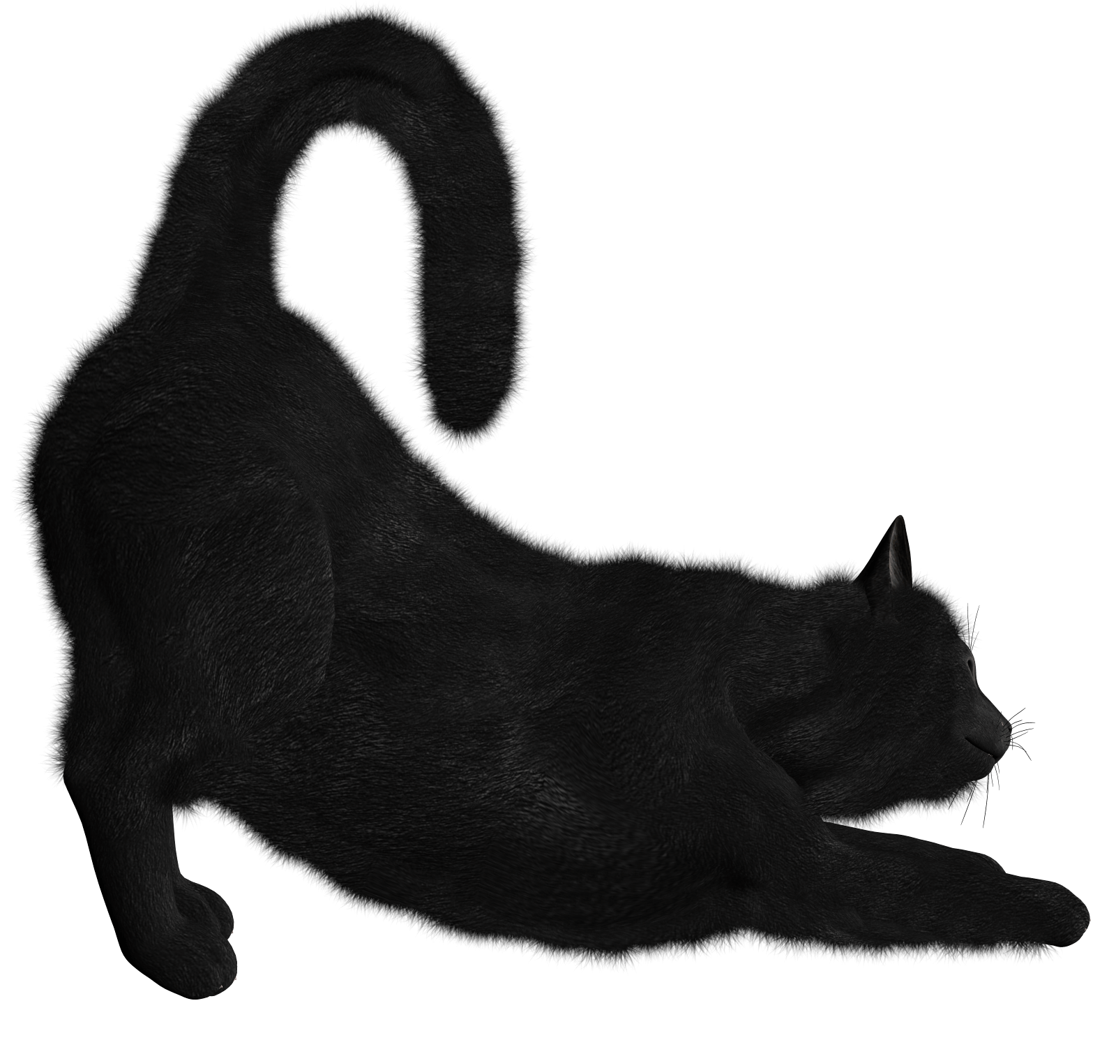 Cat fur clipart svg library Black Cat Png Image svg library