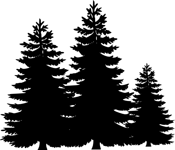 Pine tree clipart transparent background banner evergreen tree stencil - Google Search … | Christma… banner
