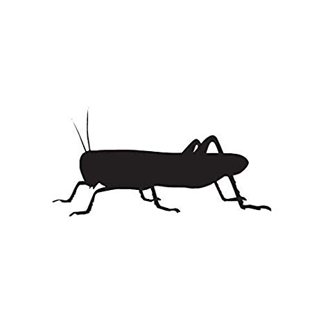 Black cricket insect clipart clipart library Amazon.com: Grasshopper Cricket Insect - Vinyl Decal Sticker - 7.5 ... clipart library
