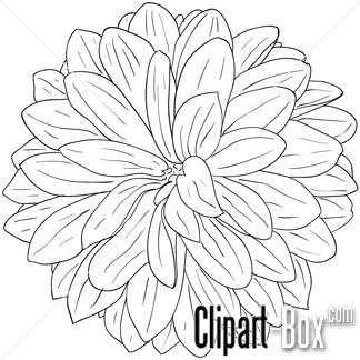 Black dahlia clipart royalty free stock dahlia flower clip art #19 | 67 Dahlia Flower Clipart | Clipart Fans ... royalty free stock