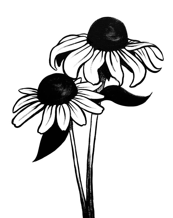 Black eyed susan clipart black and white clipart transparent library Black Eyed Susan Drawing | Free download best Black Eyed Susan ... clipart transparent library