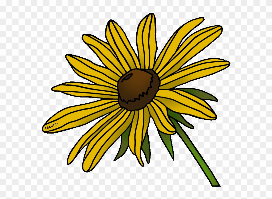 Black eyed susan clipart black and white clip art transparent library State Flower Of Maryland - Black Eyed Susan Clip Art - Png Download ... clip art transparent library