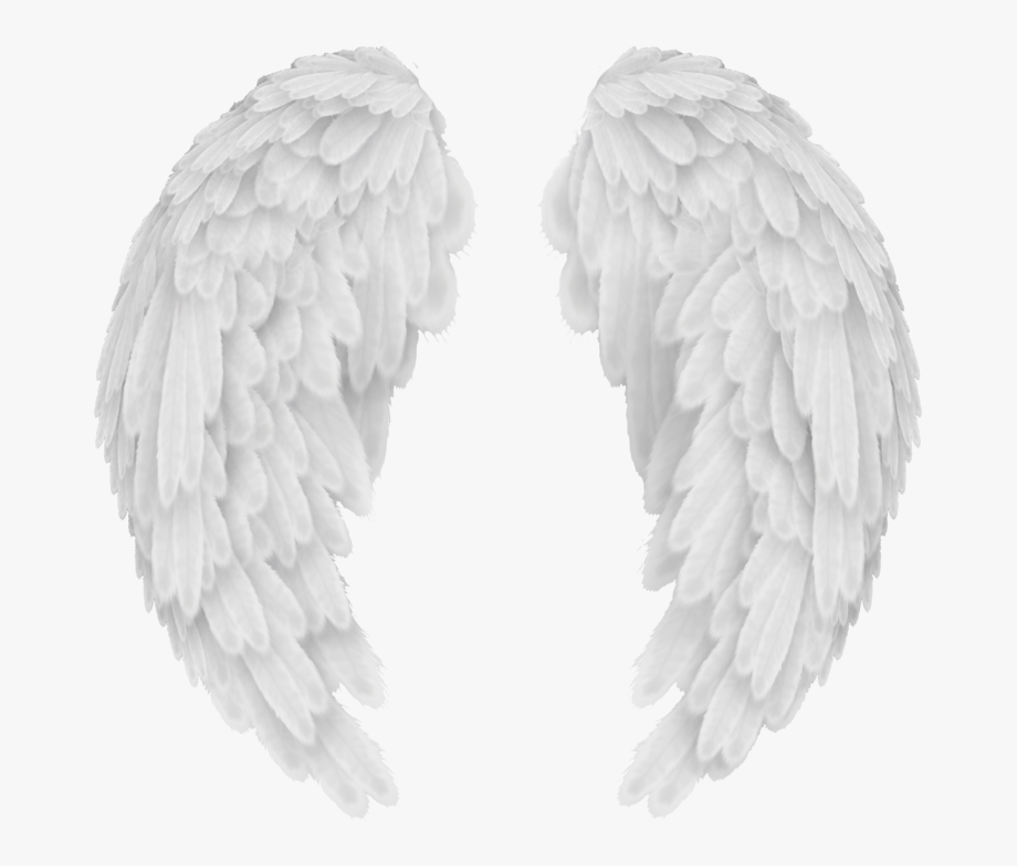Black feather angel wing clipart jpg royalty free Wings Png Images Free Download, Angel Wings Png Clip - Transparent ... jpg royalty free