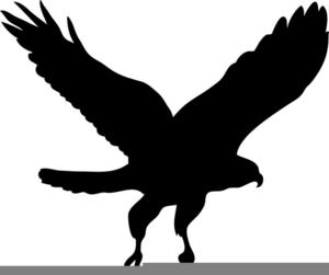 Black hawks clipart clipart stock Black Hawk Clipart   Free Images at Clker.com - vector clip art ... clipart stock