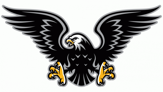 Black hawks clipart png free download img.php (670×380)   spiritwear ideas 2017   Hawk logo, Hawk bird ... png free download
