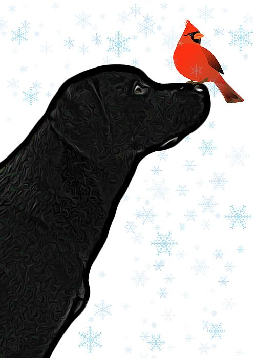 Black lab christmas clipart