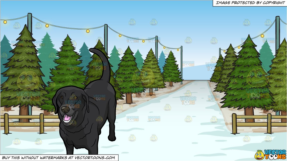 Black lab christmas clipart banner A Black Labrador and Christmas Tree Lot Background banner