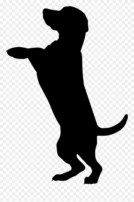 White labrador retriever clipart