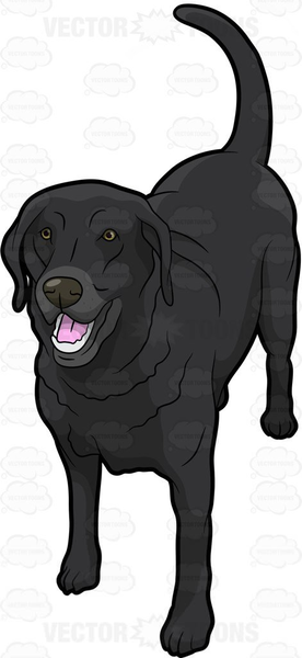 Black labrador retriever clipart graphic library Black Lab Cartoon Clipart | Free Images at Clker.com - vector clip ... graphic library