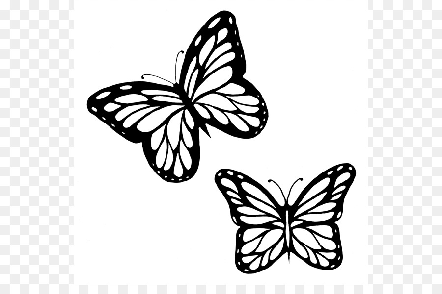 Black outline clipart of butterfly png freeuse Butterfly Black And White Png Outline & Free Butterfly Black And ... png freeuse
