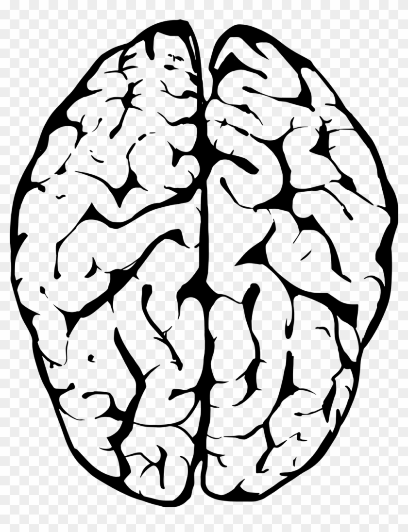 Black outline of figure with brain clipart svg library Human Brain Png Black And White & Free Human Brain Black And White ... svg library