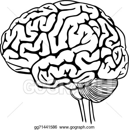 Black outline of figure with brain clipart svg freeuse download Human Brain Clipart   Free download best Human Brain Clipart on ... svg freeuse download