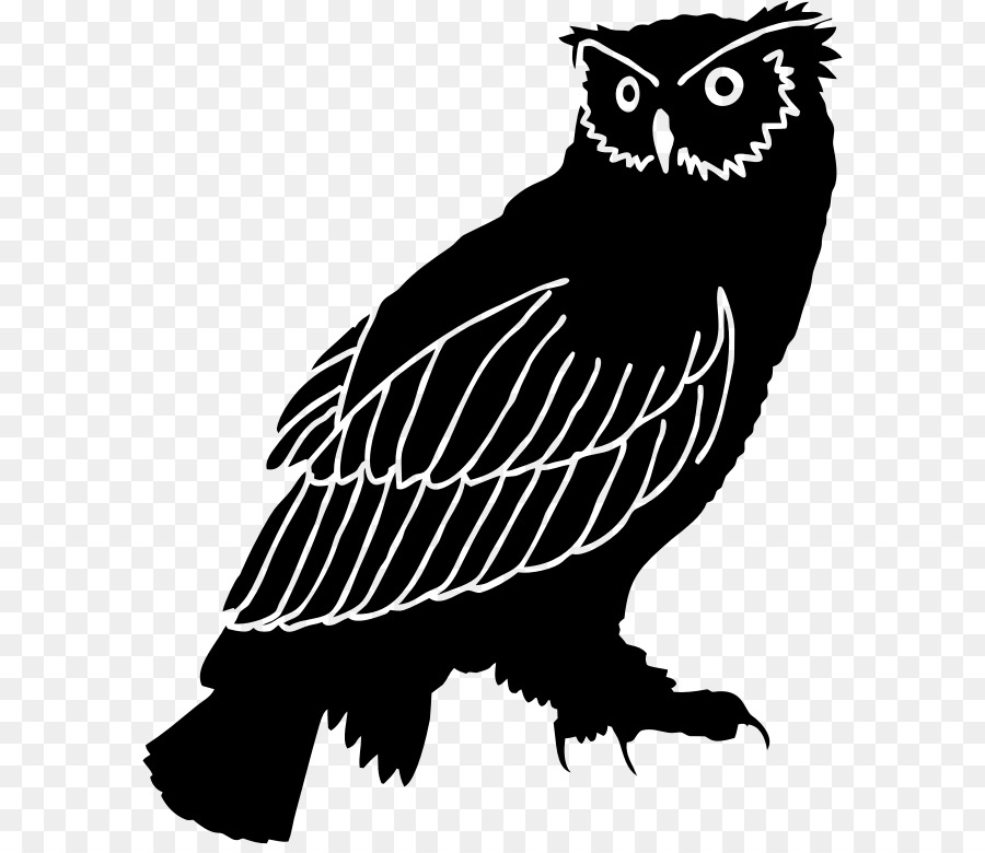 Black owl clipart svg download Owl Silhouette Bird Black and white Clip art - owl png download ... svg download