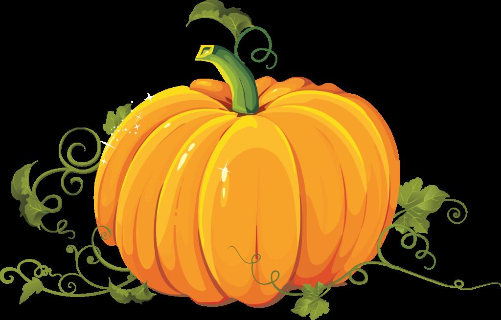 Pumpkin Clipart Transparent Background 5 Check All No 3503 2240 ... clip art freeuse download