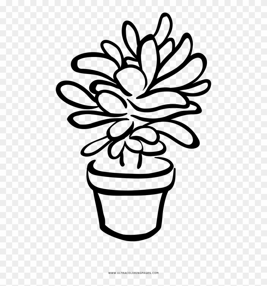 Black succulent clipart jpg royalty free download Succulent Coloring Page - Black And White Succulent Clip Art - Png ... jpg royalty free download