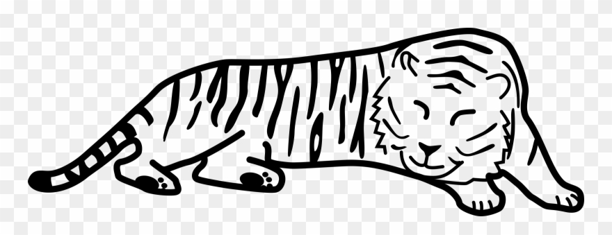 White tiger laying down clipart image freeuse download Tiger Black And White Sleeping Tiger Clipart Clipartfest - Cartoon ... image freeuse download