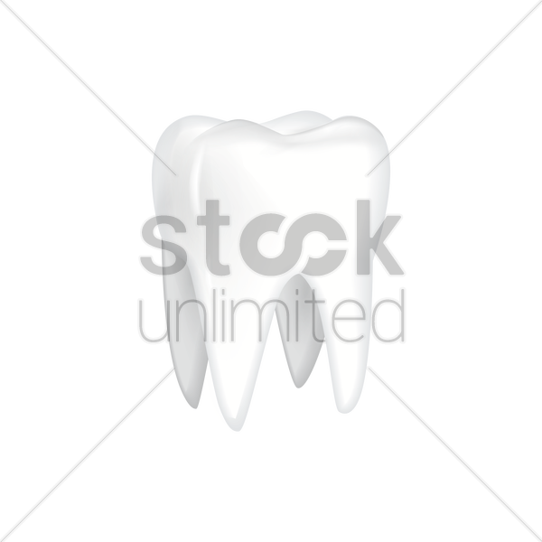 Molar Tooth Drawing at GetDrawings.com | Free for personal use Molar ... clipart free library
