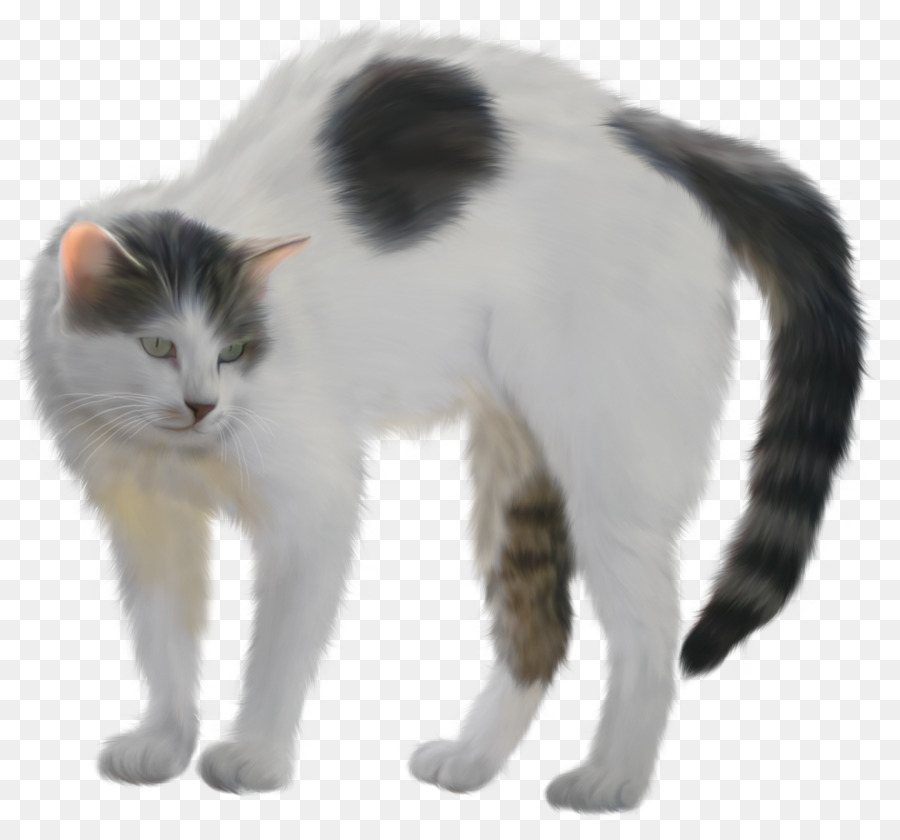 Black turkish van clipart graphic royalty free download Cartoon Cat png download - 1097*1000 - Free Transparent Kitten png ... graphic royalty free download