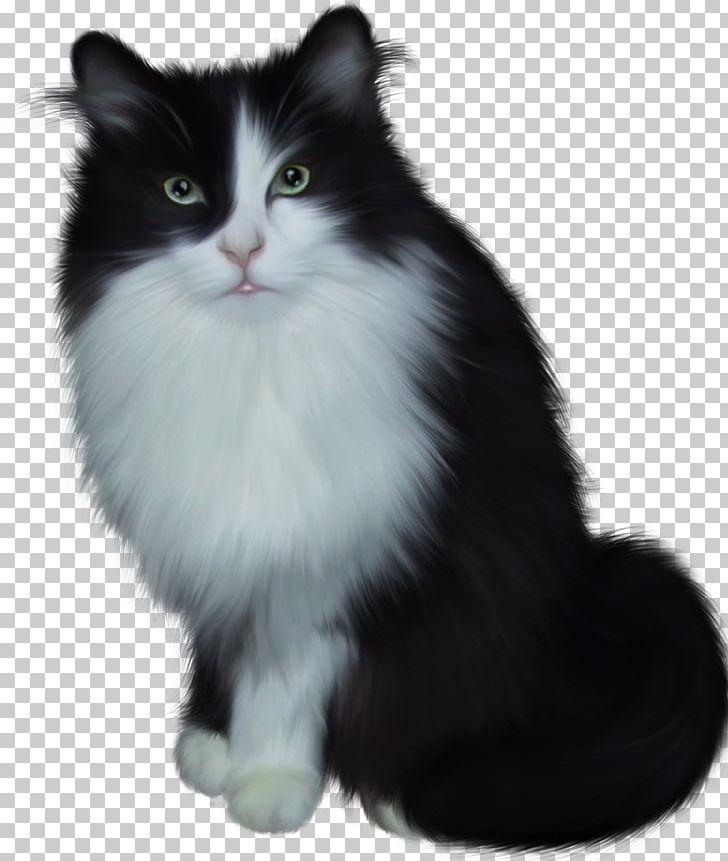 Black turkish van clipart jpg royalty free download Siamese Cat Van Cat Turkish Angora Kitten Lion PNG, Clipart, Animal ... jpg royalty free download