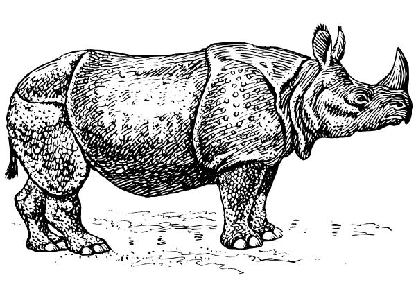 Black vs white rhino clipart svg free stock Free Black and White Rhinoceros Clipart - Clip Art Image 3 of 3 svg free stock