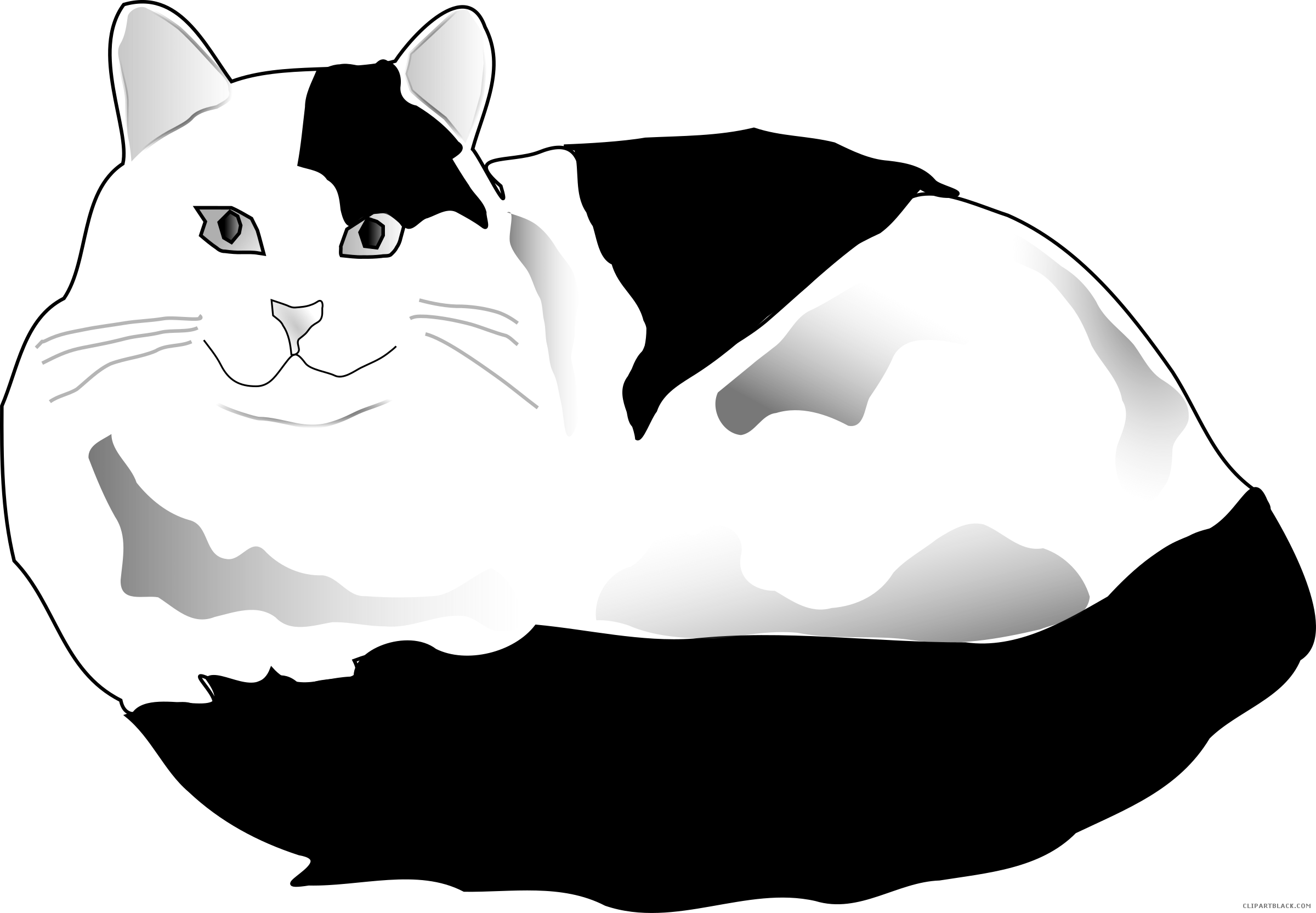 White Cat Clipart - ClipartBlack.com jpg royalty free library