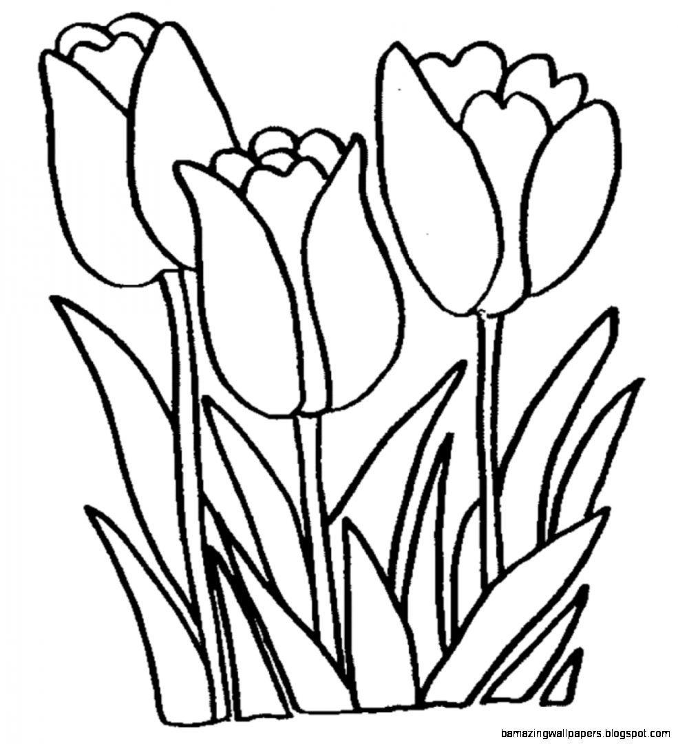 Black & white tulip clipart